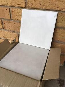 Cotto Floor tile white 20cm x 20cm Medowie Port Stephens Area Preview