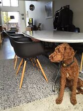 4 x Replica Eames  chairs Varsity Lakes Gold Coast South Preview