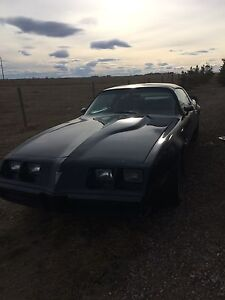 1980 firebird trans am