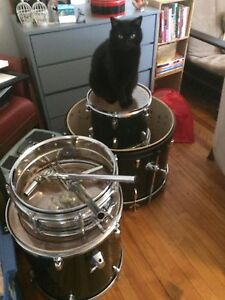 CB drumset shells/lugs/arms/etc + Ludwig snare shell