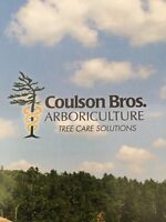 ARBORISTS/TREE CLIMBERS/GROUNDSPERSON WANTED