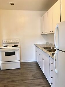 Newly Renovated- All Inclusive-1 Bedroom Apartment