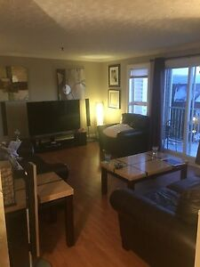 Large 2 Bedroom / Collins Grove, Dartmouth / Available Feb 27