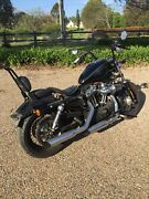 Harley 48 Pitt Town Hawkesbury Area Preview