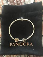Pandora Bracelet with charms Ormeau Gold Coast North Preview