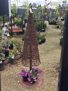 Barbed Wire Christmas Tree Carlingford The Hills District Preview