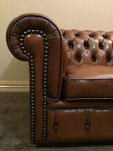 Moran Chesterfield Cigar Brown Sofa Bendigo 3550 Bendigo City Preview