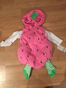 6-9 month watermelon Halloween costume
