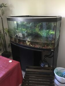 55 gallon fish tank for sale!