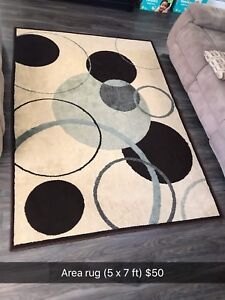 Area rug (5 x 7 ft)