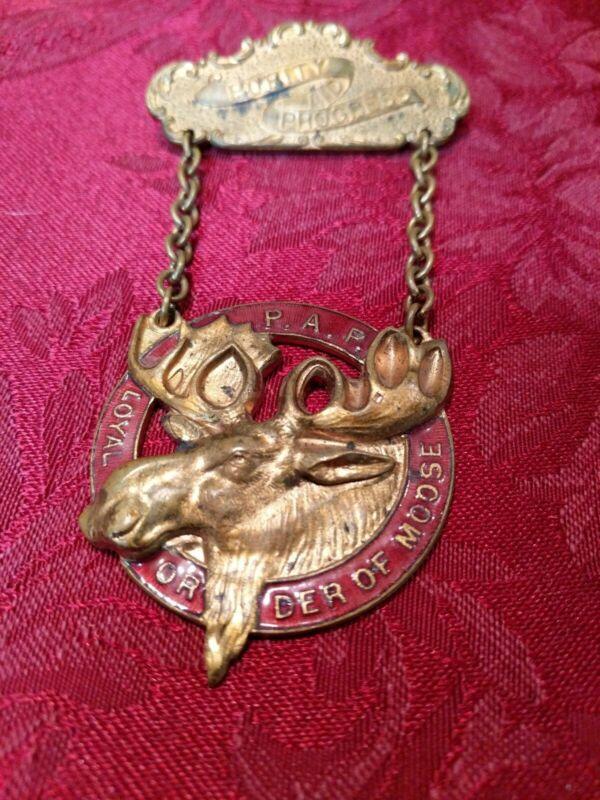 Purity And Progress Loyal Order Of Moose Pin