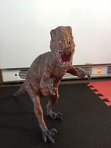 Dinosaure T-Rex  rigide - T-Rex dinosaur