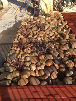 ians landscaping Morisset Lake Macquarie Area Preview
