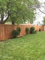 Need a new fence?