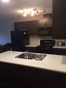 Ellerslie apartment for rent, utilities included