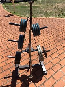 Weight tree with weights, long bar and hand held bars! Wattle Grove Liverpool Area Preview
