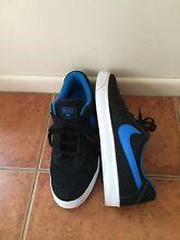 Nike men's skate shoes