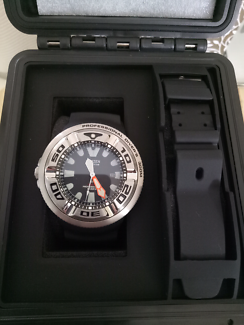 Citizen Promaster Professional Dive Watch