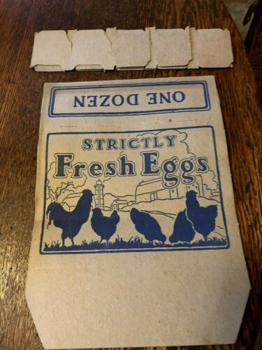 Vintage Egg Carton With Dividers Wit Hens and Chickens