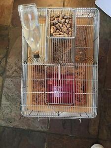 Small Pet Cage Weston Weston Creek Preview