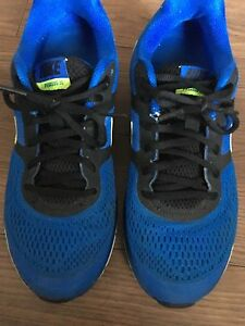 Men's blue and green nikes