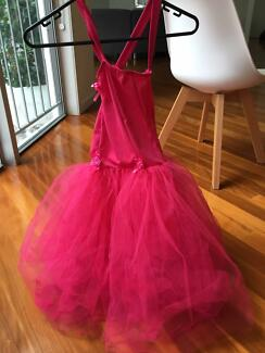 Stunning hand-made Pink Fairy Princess Dress & Roses Sz XL