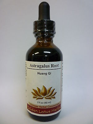 Astragalus (Huang Qi) Liquid Herbal Extract by Golden Lotus -