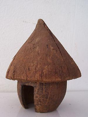 box coconut. Case en noix de coco