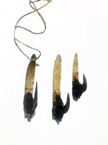 convolut of three fine tribal fish hooks Solomon Islands (Ulawa Island)