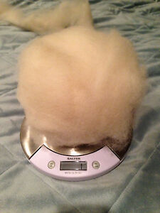 4oz Soft Natural White or Brown/Black 100% Alpaca Roving