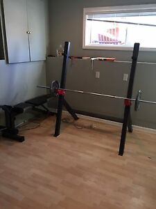 Olympic bench for sale