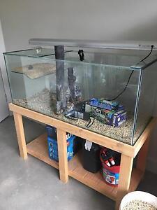 Turtle tank / aquarium for sale Victor Harbor Victor Harbor Area Preview