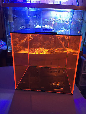7.5 Gallon Fluorescent Orang Acrylic Auto Top Off Container 4 Aquarium Reef Tank