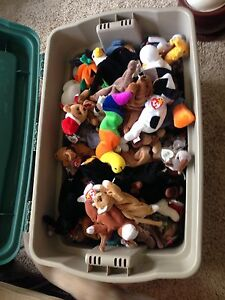 Beanie Baby and Beanie Buddy Collection  Stratford Kitchener Area image 2