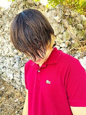 Maroon IZOD LACOSTE Euro Size 4 Cotton Size M Polo Shirt