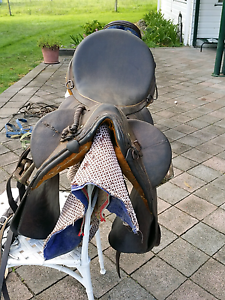 Stock saddle Coolongolook Great Lakes Area Preview