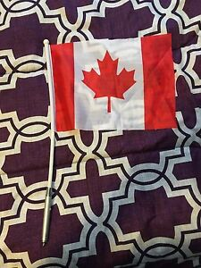Light up Canada Flag from World Juniors