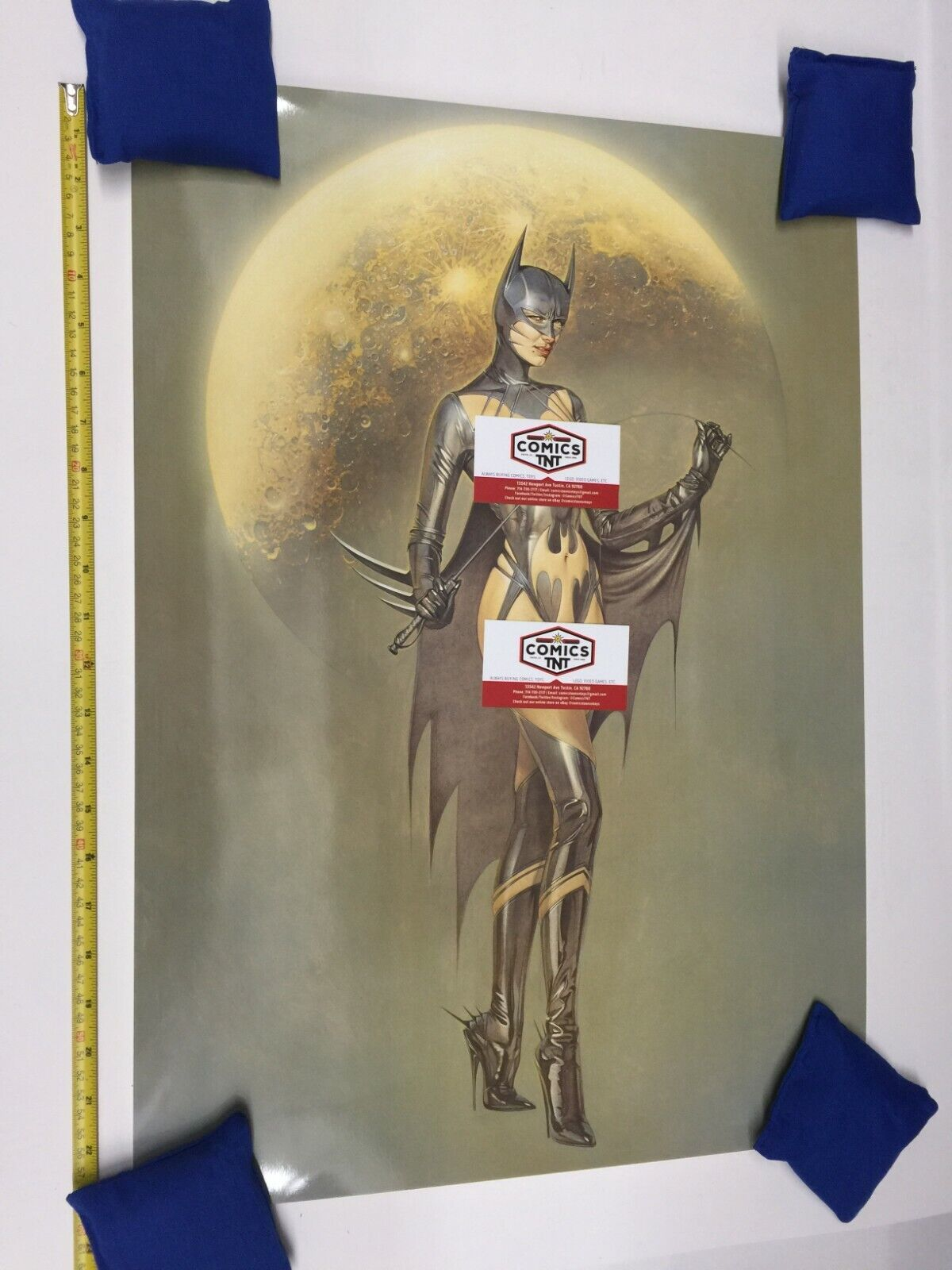 Hajime Sorayama Naughty SeXXXy Batgirl 24x17 A2 Art Print Lithograph Poster - $62.00