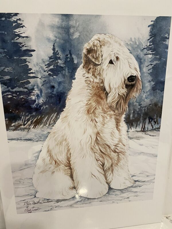 Soft Coated Wheaten Terrier Ltd Ed 11x14 Print Signed Van Loan