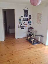 3BDR House for share $170 including bills and internet Hastings Mornington Peninsula Preview