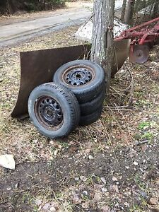 Ford Escort Winter Tires and Rims