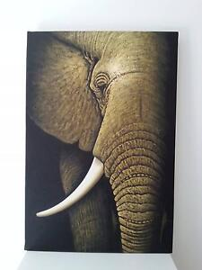 ELEPHANT PAINTING Terrigal Gosford Area Preview