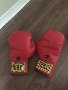 Everlast boxing gloves barely used