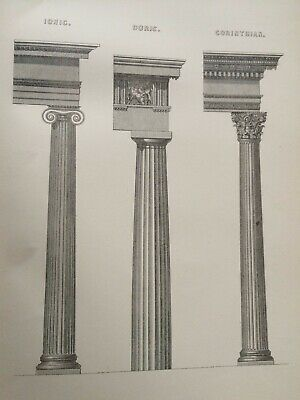 1891 Greek Column Architecture Original Antique Engraving Print Classic Orders
