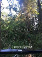 Lot clearing , tree removals,storm cleanup,excavating,grading