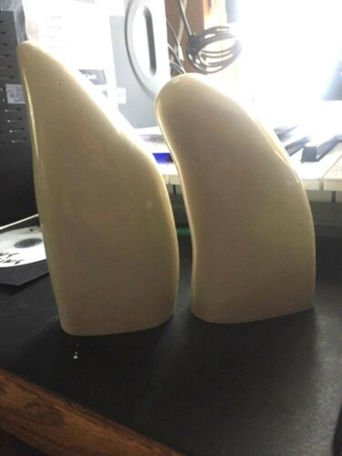 Two blank Sperm Whale replica teeth ready to scrimshaw Already Polished