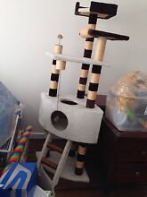 Cat tree / scratching post / play centre Bonbeach Kingston Area Preview