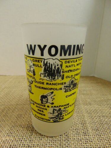 """Vtg Wyoming Frosted Highball Drinking Glass 4.75"""""""
