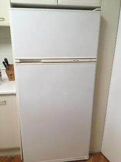 Fisher and Payless 510 litre fridge