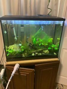 37 gallon with all accessories and stand